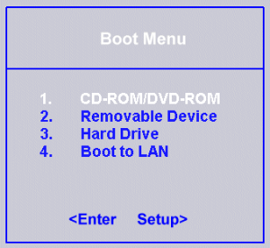 boot from external media