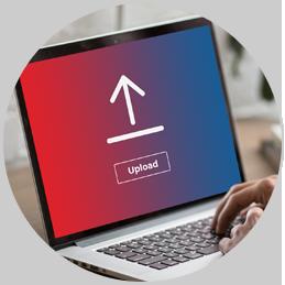 upload database